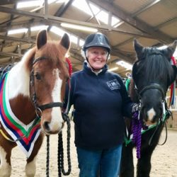 Chiverton RDA ponies