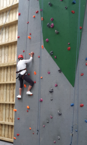 BF Adventure Cornwall climbing wall